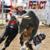 A rodeo clown tries to free Derek Creswell, from Weatherford, OK, as he gets his hand caught during the Bull Riding Competition of Thursday morning\'s International Finals Youth Rodeo in Shawnee, OK, Thursday, July 17, 2008. BY PAUL HELLSTERN, THE OKLAHOMAN