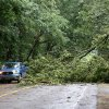Photo - A fallen tree limb slows traffic after a storm in Vicksburg, Mich., Tuesday, July 1, 2014. Severe thunderstorms packing high winds knocked down trees and power lines across parts of Michigan, leaving more than 230,000 without power and injuring a firefighter. (AP Photo/Kalamazoo Gazette-MLive Media Group, Mark Bugnaski) ALL LOCAL TELEVISION OUT; LOCAL TELEVISION INTERNET OUT
