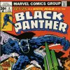The Black Panther: Marvel\'s first black superhero