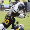 Photo -   Nevada's Aaron Bradley (81) dives over California's Chris McCain (40) and Steve Williams (1) during the first half of an NCAA college football game, Saturday, Sept. 1, 2012, in Berkeley, Calif. (AP Photo/Ben Margot)