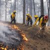 Black Forest Fire Dept. officers burn off natural ground fuel in an evacuated neighborhood, prepping the area for the encroachment of the wildfire in the Black Forest area north of Colorado Springs, Colo., on Wednesday, June 12, 2013. The number of houses destroyed by the Black Forest fire could grow to around 100, and authorities fear it\'s possible that some people who stayed behind might have died. (AP Photo/Brennan Linsley)