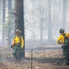 Photo - Black Timber Engine 52 firefighters work to contain the Slide Fire north of Oak Creek Overlook in Flagstaff, Ariz., Thursday, May 22, 2014. (AP Photo/The Arizona Republic, Michael Schennum)