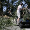 Photo -   Workers use a golf cart to carry branches from a tree that fell onto the 14th fairway at Congressional Country Club in Bethesda, Md., Saturday, June 30, 2012, after a strong storm blew through overnight. The AT&T National golf tournament was postponed to allow workers to clear the course. (AP Photo/Patrick Semansky)