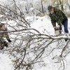 Bob Quakenbush and his daughter Dana Letual clear a fallen tree from his driveway so he can go to work Thursday, Nov. 8, 2012, in Millstone Township, N.J. The New York-New Jersey region woke up to a layer of wet snow and more power outages after a new storm pushed back efforts to recover from Superstorm Sandy.(AP Photo/Mel Evans)