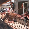 MAY 3, 1999 TORNADO : Tornado damage: Ridgecrest Baptist Church, in Bridge Creek, the day care center that was destroyed in Monday\'s tornado about 45 minutes after the kids left. A brick wall fell on cribs.