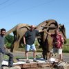 A larger-than-life bronze of a buffalo -- \'The Ancient One\' -- graces the entrance to Sugar Hill residential development just north of Arcadia Lake. Gino Miles, the sculptor at right, is shown with assistant Gilberto Romero and Sugar Hill developer Barry Rice, center. The statue was installed Thursday and is part of Edmond\'s citywide effort to place art in public rights of way. The $54,000 statue is funded by Rice, who is an Edmond attorney and former city councilman, with $20,000 coming from City of Edmond funds. Rice\'s property is located in a historically significant area, where buffalo wallows still can be seen, and is perched above the old Route 66, shown in the background. Community Photo By: Photo Provided Submitted By: Carol, Edmond