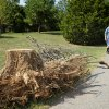 Bill Davies past storm damage debris that is still on his property and around his Edmond neighborhood on Thursday, August 25, 2011. Photo by Bryan Terry, the Oklahoman