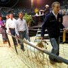 Chance Greenroyd, of Noble FFA, leads away his Reserve Grand Champion goat during the Oklahoma Youth Expo Sale of Champions at State Fair Park in Oklahoma City on Monday, March 23, 2008. PHOTO BY JOHN CLANTON, THE OKLAHOMAN ORG XMIT: KOD