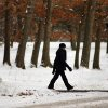 Photo - A walker enjoys a mild afternoon at Nay Aug Park in Scranton, Pa. on Tuesday, Feb. 4, 2014. A winter storm is on the way for the northeast part of the country. (AP Photo/Scranton Times & Tribune, Butch Comegys)  WILKES BARRE TIMES-LEADER OUT; MANDATORY CREDIT