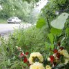 GIRLS, MURDERS, SHOOTING DEATHS: Flowers left where Taylor Placker and Skyla Whitaker were murdered near Weleetka, Monday, June 9, 2008. Photo by David McDaniel ORG XMIT: KOD