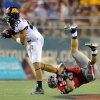 Photo -   Minnesota's Devin Crawford-Tufts (80) tries to evade UNLV's Max Ehlert (53) during the second half of their NCAA college football game at Sam Boyd Stadium, Thursday, Aug. 30, 2012 in Las Vegas. (AP Photo/David Becker)
