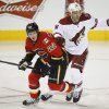 Photo - Phoenix Coyotes' David Moss, right, and Calgary Flames' Lee Stempniak chase the puck during first period NHL hockey action in Calgary, Canada, Wednesday, Jan. 22, 2014. (AP Photo/The Canadian Press, Jeff McIntosh)