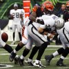 Oakland Raiders quarterback Carson Palmer (3) fumbles the ball as he is sacked by Cincinnati Bengals outside linebacker Vontaze Burfict in the second half of an NFL football game, Sunday, Nov. 25, 2012, in Cincinnati. Cincinnati recovered the ball and won 34-10. (AP Photo/David Kohl)