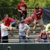 Texas A&M\'s Emily Albus (17) watches fans try to catch a home run ball by OU\'s Lauren Chamberlain (44) in the 4th inning during the final game of the Norman Regional in 2014 NCAA softball championship between Oklahoma and Texas A&M in Norman, Okla., Sunday, May 18, 2014. OU won 11-6. Photo by Nate Billings, The Oklahoman