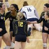 Oregon\'s Liz Brenner, left, and Ariana Williams, along with their teammates celebrate winning the second set of their national semifinal game against Penn State during the NCAA college women\'s volleyball tournament Thursday, Dec. 13, 2012 in Louisville, Ky. (AP Photo/Timothy D. Easley)
