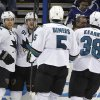 Photo - San Jose Sharks center Joe Pavelski (8) celebrates his goal against the Tampa Bay Lightning with teammates Tyler Kennedy (81), Jason Demers (5) and Bracken Kearns (38) during the second period of an NHL hockey game Saturday, Jan. 18, 2014, in Tampa, Fla. (AP Photo/Chris O'Meara)