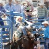 Ethan Andrepont, from Deridder, LA, in the Bareback Bronc at the International Finals Youth Rodeo in Shawnee, Friday, July 11, 2014. Photo by David McDaniel, The Oklahoman