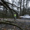 A firefighter directs traffic around a downed tree during the the early stages of Hurricane Sandy, Monday, Oct. 29, 2012, in Old Orchard Beach, Maine. Hurricane Sandy continued on its path Monday, as the storm forced the shutdown of mass transit, schools and financial markets, sending coastal residents fleeing, and threatening a dangerous mix of high winds and soaking rain. (AP Photo/Robert F. Bukaty) ORG XMIT: MERB108