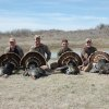 Photo - The opening morning of turkey season was successful for these four who were hunting near Mooreland in Woodward County. Pictured from left to right are Jim Keith of Edmond, Daniel Scott of Tulsa, Michael Fleharty of Edmond and Rob Maier of Tulsa. Spring turkey season remains open through May 6. Photo provided