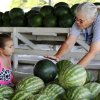 Chloe Harris gets a quick lesson in how to choose a ripe watermelon from her grandmother, KayPowell, as they shop at Joel Tumblson\'s roadside stand on US 81. Watermelon farmers are busy harvesting melons in preparation for the annual watermelon festival in Rush Springs on Aug. 10, 2013. Photo taken Wednesday, July 24, 2013. Photo by Jim Beckel, The Oklahoman.