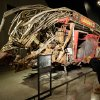 The remains of Fire Dept. of New York Ladder Company 3\'s truck are displayed at the National Sept. 11 Memorial Museum, Wednesday, May 14, 2014, in New York. The museum is a monument to how the Sept. 11 terror attacks shaped history, from its heart-wrenching artifacts to the underground space that houses them amid the remnants of the fallen twin towers\' foundations. It also reflects the complexity of crafting a public understanding of the terrorist attacks and reconceiving ground zero. (AP Photo)