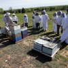 Participants wear bee suits as Brian Royal demonstrates bee keeping techniques to the Noble Bee Keepers Club at his home based business on Saturday, May 4, 2013, in Norman, Okla. Photo by Steve Sisney, The Oklahoman