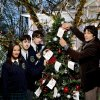 "Photo -  From left, Emmalyn Estrada, Amitai Marmorstein, Richard Harmon and Jason Gedrick star in ""The Wishing Tree."" -"