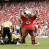 Photo - KC WOLF: A fan who ran on the field is restrained as the Kansas City mascot gestures during a football game between the Kansas City Chiefs and the Minnesota Vikings at Arrowhead Stadium in Kansas City, Mo., Sunday, Sept. 23, 2007. (AP Photo/Charlie Riedel) ORG XMIT: _W4R5622.JPG