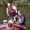 A specialist search dog rides on a boat on the River Dyfi as the hunt for missing 5-year old April Jones continues around Machynlleth, mid Wales, Saturday Oct. 6, 2012. The search for April Jones resumed Saturday after bad weather forced searchers to be stood down overnight. The five-year-old girl went missing from near her home in Machynlleth, mid Wales, on Monday evening. (AP Photo / Peter Byrne, PA) UNITED KINGDOM OUT - NO SALES - NO ARCHIVES