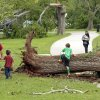 A family looks at storm damage on Saturday, April 14, 2012, in Norman, Okla. Dozens of trees were uprooted by Friday\'s tornado in Abe Andrews Park. Photo by Steve Sisney, The Oklahoman