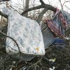 The bed from a home rests in a tree behind a residence on Highway 70 after Tuesday\'s deadly tornado in Lone Grove, Okla., on Wednesday, Feb. 11, 2009. Photo by Steve Sisney, The Oklahoman