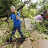 Brad Avey clears fallen trees from his property, 2700 Old Farm Rd., after a tornado moved through Edmond, Okla., Sunday, May 19, 2013. Photo by Nate Billings, The Oklahoman