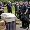 POLICE DOG FUNERAL: Oklahoma County Sheriff\'s Deputy Sean Steadman and his K-9 partner Bose offer final farewells during funeral services for K-9 Deputy Eron at Precious Pets Cemetery on Thursday, July 25, 2013 in Spencer, Okla. Deputy Eron started with the Oklahoma County Sheriff\'s office in 2004, serving eight years as a Bomb Detection K-9 before his retirement. Eron\'s last call of service for his career was tracking and capturing a suspect for the Choctaw Police Dept. Photo by Chris Landsberger, The Oklahoman