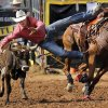 Devon Burris of Queen Creek, AZ, leaps from his horse and grabs the horns of this running steer in the steer wrestling competition during the morning go-round at the IFYR rodeo on Thursday, July 11, 2013. July 10, 2013. Photo by Jim Beckel, The Oklahoman.