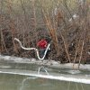 Photo - A Freedom Industries worker places a boom in the Elk River Thursday, Jan. 9, 2014, at the site of a chemical leak in Charleston that has fouled the drinking water in five West Virginia counties. (AP Photo/The Charleston Gazette, Chris Dorst)