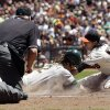 Photo -   Oakland Athletics' Collin Cowgill, center, scores on a wild pitch from San Francisco Giants starting pitcher Tim Lincecum, right, during the fourth inning of an interleague baseball game in San Francisco, Sunday, May 20, 2012. (AP Photo/Marcio Jose Sanchez)