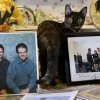 Photo - The Blairs' family cat stands between photos of Thomas A. Blair and Al Blair III. PHOTO BY JIM BECKEL, THE OKLAHOMAN <strong>Jim Beckel</strong>