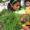Photo -  A child in the Urban Mission after-school gardening program shows the carrots she grew in her garden. Photo provided