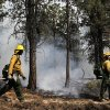 AmeriCorps volunteer firefighters assigned to the El Paso County Sheriff\'s Office, Woodland Fire Crew, help contain a spot fire in an evacuated area of forest, ranches and residences, in the Black Forest wildfire area, north of Colorado Springs, Colo., on Thursday, June 13, 2013. The blaze in the Black Forest area northeast of Colorado Springs is now the most destructive in Colorado history, surpassing last year\'s Waldo Canyon fire, which burned 347 homes, killed two people and led to $353 million in insurance claims. (AP Photo/Brennan Linsley)