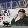 A dog walks past a mural of Venezuela President Hugo Chavez in Caracas, Venezuela, Monday, Dec. 31, 2012. Chavez is confronting