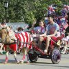 A miniature horse with carriage ride in the annual LibertyFest Fourth of July Parade in downtown Edmond, OK, Thursday, July 4, 2013, Photo by Paul Hellstern, The Oklahoman