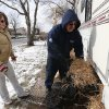Anthony Cavallo, right, and his wife Jeanne Cavallo use hay to insulate their trailer in preparation for a cold night, Wednesday, Jan. 23, 2013, in Union Beach, N.J. The Cavallo\'s had to buy the trailer out of pocket and place it next to their home damaged by Superstorm Sandy because they\'ve yet to receive storm aid. Cold weather is bringing extra worries to residents of the areas hit by Sandy. The deep freeze will continue into Thursday and Friday. There\'s a chance of snow Friday afternoon and evening, but accumulations are expected to be minor. (AP Photo/Julio Cortez)