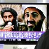A man watches a TV broadcast on the death of Osama bin Laden at Seoul train station in Seoul, South Korea, Monday, May 2, 2011. Osama bin Laden, the glowering mastermind behind the Sept. 11, 2001, terror attacks that killed thousands of Americans, was killed in an operation led by the United States, President Barack Obama said Sunday. The Korean read: