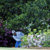 Photo - Jonas Blixt, of Sweden, looks out from behind the bushes off the second fairway after hitting out of the rough during the first round of the Masters golf tournament Thursday, April 10, 2014, in Augusta, Ga. (AP Photo/Matt Slocum)
