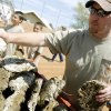 Brandon Porter, from Beaver, picks out his cow chips during the 39th Annual World Cow Chip Throwing Championship in Beaver, Okla., Saturday, April 19, 2008. BY MATT STRASEN, THE OKLAHOMAN