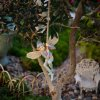 Miniatures from a fairy garden, pictured in