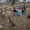 Kassidee Williams, 7, wearing stocking cap, and her cousin Kayleigh Bates, 9, feed geese during an outing at Joe B. Barnes Regional Park in Midwest City, Tuesday afternoon, Dec. 21, 2010. Kassidee\'s brother, Kohlten, 5, is in background. Photo by Jim Beckel, The Oklahoman