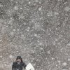A man walks with his bike during heavy snowfall in Ghent, Belgium, Tuesday, Jan. 15, 2013. (AP Photo/Yves Logghe)