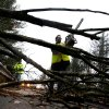 A worker cut a downed tree that fell on a road during the the early stages of Hurricane Sandy, Monday, Oct. 29, 2012, in Old Orchard Beach, Maine. Hurricane Sandy continued on its path Monday, as the storm forced the shutdown of mass transit, schools and financial markets, sending coastal residents fleeing, and threatening a dangerous mix of high winds and soaking rain. (AP Photo/Robert F. Bukaty) ORG XMIT: MERB107