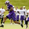Photo - In this photo taken June 18, 2013, Minnesota Vikings running back Adrian Peterson carries the ball during NFL football minicamp at Winter Park in Eden Prairie, Minn. In training camp, an allergic reaction to shellfish caused Peterson to gasp for air as his throat swelled. Vikings staff had epinephrine injections handy, and the star running back was soon out of trouble. Now, Peterson has added EpiPen to his portfolio of sponsorships, grateful for the safety net it provides. (AP Photo/Genevieve Ross)